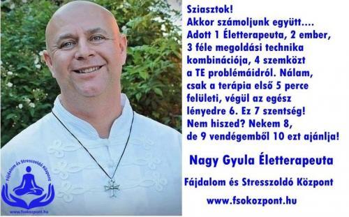 Nagy Gyula életterapeuta Fájdalom és Stresszoldó Központ